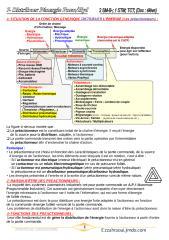 7-Distribuer_Pneu.pdf