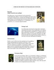 especies de méxico en peligro de extinción.doc
