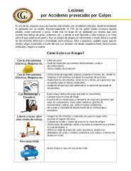 Anexo 9 Lesiones por Accidentes provocados por Golpes.pdf