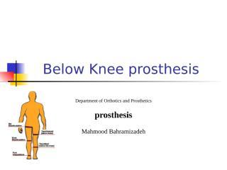 below knee.ppt