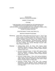 UN2009-SMP.pdf