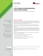 A Platform for Modernizing Java Applications_ Designing worloads for the clouds and modern ecosystems.pdf