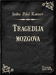 polickamov_tragedijamozgova.epub